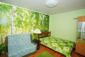 1-комн. квартира, 22 кв.м. на 3 человека, Народная улица, Нижний Новгород - Фотография 1