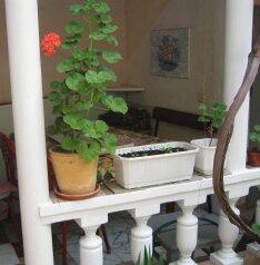 1-комн. квартира, 10 кв.м. на 1 человек, улица Краевского, Евпатория - Фотография 2