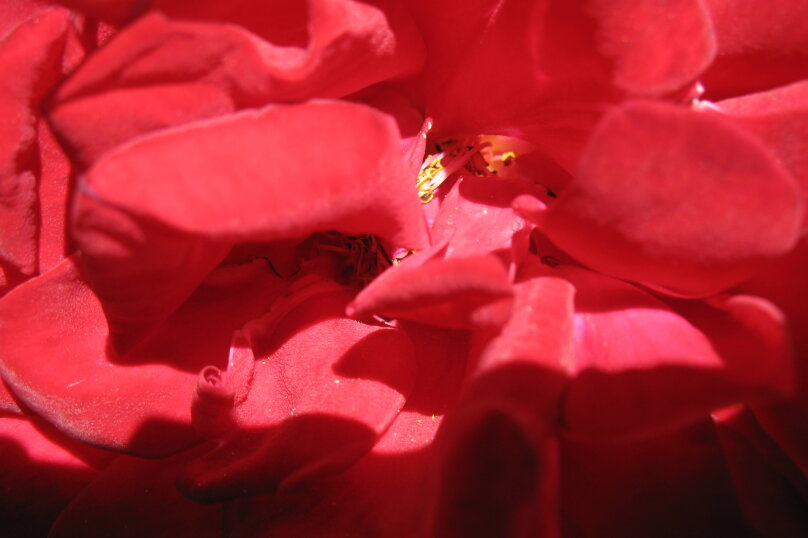 """Гостевой дом """"На Галины Петровой 31"""", Галины Петровой, 31 на 7 комнат - Фотография 20"""