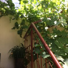 Гостевой дом, улица Вагулы, 4 на 9 номеров - Фотография 2
