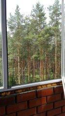 1-комн. квартира, 48 кв.м. на 4 человека, Московский проспект, Воронеж - Фотография 2