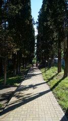 Гостевой дом, п. Вишнёвка на 5 номеров - Фотография 3