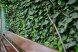 Двухместный номер с видом на сад, Конечный переулок, Феодосия - Фотография 18