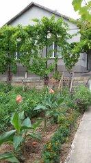 Гостевой домик, 50 кв.м. на 6 человек, 2 спальни, Молодёжная улица, 12, Щебетовка - Фотография 2