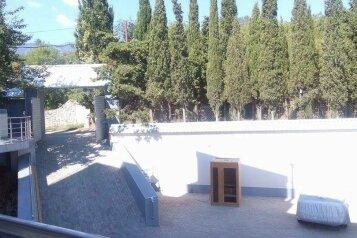 Гостевом дом с бассейном , Алуштинская, 21а на 15 номеров - Фотография 3