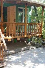 Гостевой дом в лесу, Лесная на 2 номера - Фотография 2