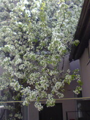 Гостевой дом, улица Шевченко, 174А на 18 номеров - Фотография 4