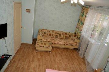 1-комн. квартира, 32 кв.м. на 4 человека, Красная улица, Пенза - Фотография 1