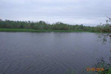 Дом на берегу озера в Великом Устюге, 80 кв.м. на 6 человек, 2 спальни, Барсуково, Великий Устюг - Фотография 2