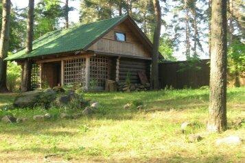 Дом меж двух озёр на 4 человека, 1 спальня, д. Заречье, Осташков - Фотография 1