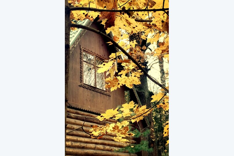 Дом в лесу, 83 кв.м. на 6 человек, 1 спальня, поселок Художников, 33, Абрамцево - Фотография 16