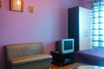 1-комн. квартира, 25 кв.м. на 2 человека, Фрунзе, 8 В, Автозаводский район, Тольятти - Фотография 2