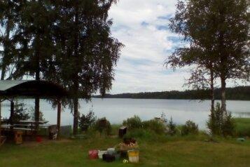 Дом в лесу на берегу озера, 36 кв.м. на 4 человека, 1 спальня, д. Стеклино, 35, Андреаполь - Фотография 4