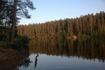 Дом в кругу соснового леса, 98 кв.м. на 8 человек, 3 спальни, п. Лосево (д. Ягодная), Приозерское шоссе, 5, Санкт-Петербург - Фотография 2