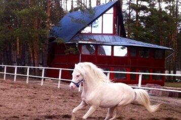Дом где можно покататься на лошадях и пони , 190 кв.м. на 13 человек, 4 спальни, улица Центральная, 1а, Тверь - Фотография 2