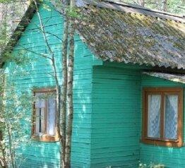 Домик в 5 метрах от озера в лесу, 30 кв.м. на 4 человека, 2 спальни, Лужская лилия, 1, Луга - Фотография 1