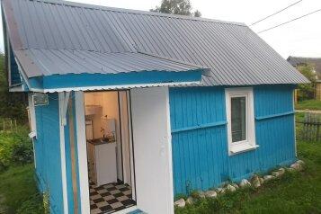 Дом на озере Селигер, 20 кв.м. на 4 человека, 1 спальня, Центральная, Деманск - Фотография 1
