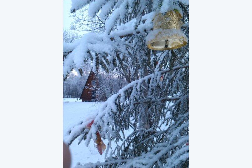 Дом в Русской деревне с видом на реку на 6 человек, 2 спальни, д. Заречье, Центральная, 3, Луга - Фотография 2