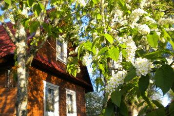 Дом в Русской деревне, 90 кв.м. на 8 человек, 2 спальни, д. Заречье, Центральная, 9, Луга - Фотография 2