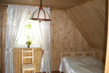 Дом в Русской деревне, 90 кв.м. на 8 человек, 2 спальни, д. Заречье, Центральная, Луга - Фотография 3