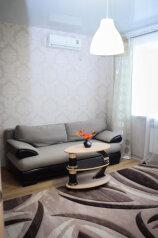 1-комн. квартира, 45 кв.м. на 2 человека, улица Федерации, 63, Ульяновск - Фотография 3