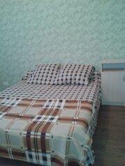 1-комн. квартира, 55 кв.м. на 3 человека, Красноармейская улица, 61, Ульяновск - Фотография 1