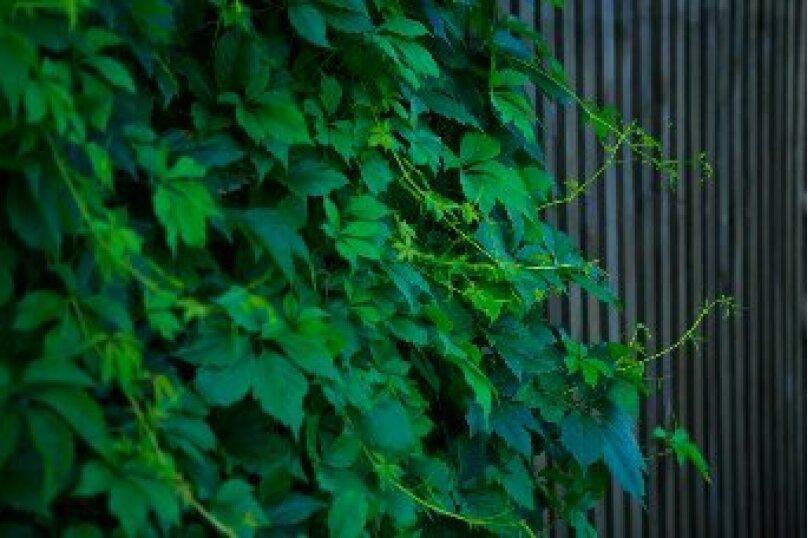 """Гостевой дом """"Усадьба Колмогоровых"""", Партизанская улица, 24А на 4 комнаты - Фотография 14"""