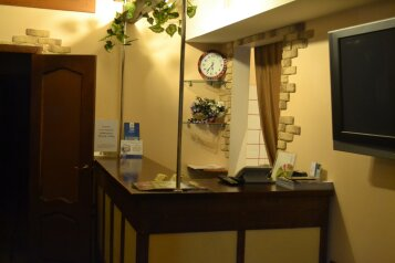 Мини-отель, Московский проспект, 133 на 9 номеров - Фотография 3