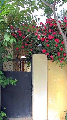 Дом, 52 кв.м. на 4 человека, 2 спальни, Л.С.Голицына, 8, Новый Свет, Судак - Фотография 1