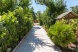 Гостевой дом/ Уютные номера у моря | Поповка | 50 м от моря, Рыбалко на 16 номеров - Фотография 18