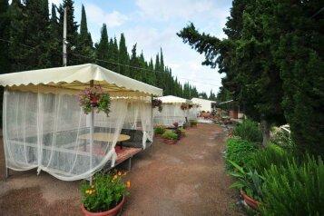 Отель, Солнечногорское, Курортная на 29 номеров - Фотография 2
