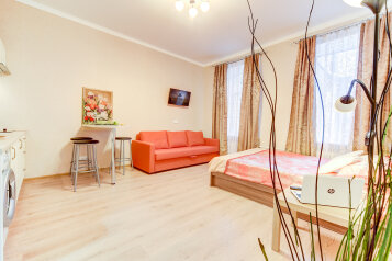 1-комн. квартира, 25 кв.м. на 4 человека, Пушкинская улица, Санкт-Петербург - Фотография 3