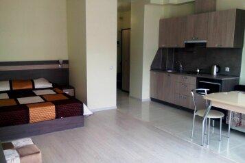 1-комн. квартира, 33 кв.м. на 4 человека, Пионерский проспект, Анапа - Фотография 1