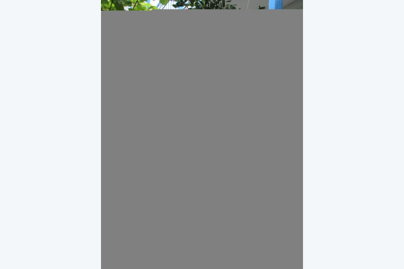 номер 2 в к. №1, улица Багратиона, , Сочи - Фотография 4