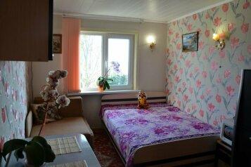 Уютный домик, 16 кв.м. на 3 человека, 1 спальня, улица Розы Люксембург, 16, Алупка - Фотография 1
