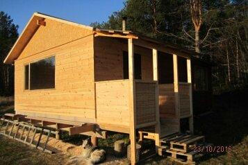 Лесной Домик на берегу оз. Лексозеро, 35 кв.м. на 4 человека, 1 спальня, Гафостров, Муезерский - Фотография 2