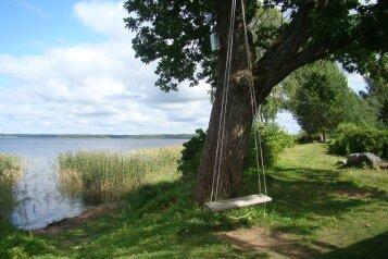Дом на берегу озера Селигер, 45 кв.м. на 5 человек, 2 спальни, пер.Озерный, 2, Осташков - Фотография 4