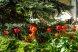 """""""Гостевой дом К&Т"""", Черцова , 27 на 15 комнат - Фотография 8"""