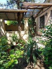 Домик на Маратовской, 60 кв.м. на 5 человек, 1 спальня, улица Маратовская, 19, Мисхор - Фотография 1