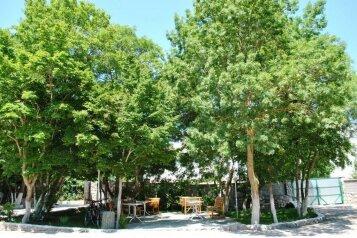 Гостевой комплекс в Байдарской долине, Степная улица, 23-24 на 16 номеров - Фотография 4