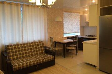 1-комн. квартира, 28 кв.м. на 4 человека, Октябрьская улица, Казань - Фотография 2