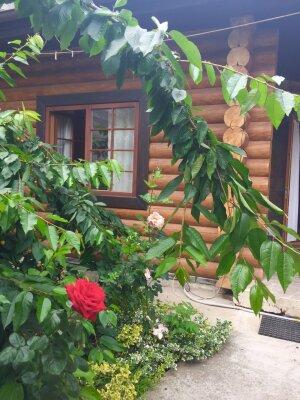Коттедж 45 м² на участке 5 сот., 45 кв.м. на 5 человек, 2 спальни, Пироговская, 12, Ялта - Фотография 1