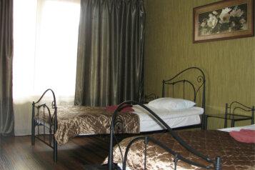 Стандарт с двумя кроватями:  Номер, 3-местный (2 основных + 1 доп), Мини-гостиница, улица Панфилова, 1 на 7 номеров - Фотография 3