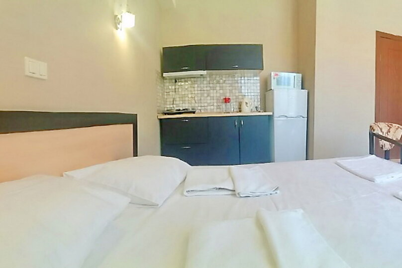 """Апартаменты """"Оплот"""", Калиновая, 9А на 15 номеров - Фотография 217"""