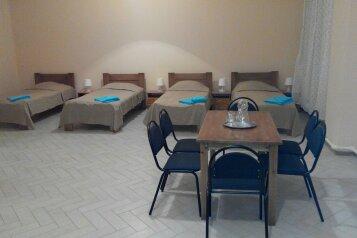 Номер хостел на 6 человек с кухней 50 м.кв:  Квартира, 6-местный, 1-комнатный, Мини-отель , Пограничная улица на 12 номеров - Фотография 3