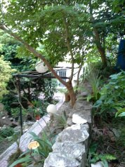 Дом для отпуска, 340 кв.м. на 10 человек, 5 спален, улица Грибоедова, Хоста, Светлана, Сочи - Фотография 3