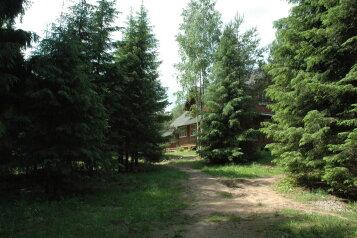 База отдыха в лесу, деревня Жалыбня, 22 на 13 номеров - Фотография 4