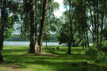 База отдыха в лесу, деревня Жалыбня, 22 на 13 номеров - Фотография 1