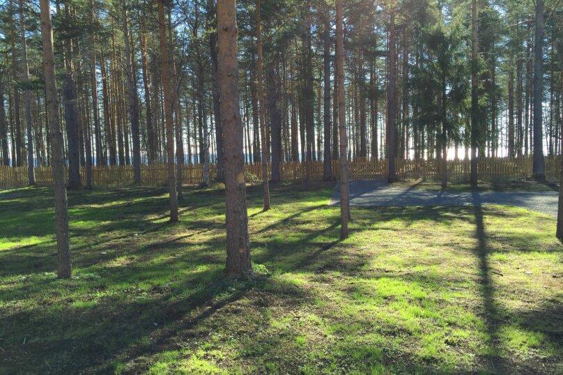 Три соловья, красная, 2, Петрозаводск - Фотография 6