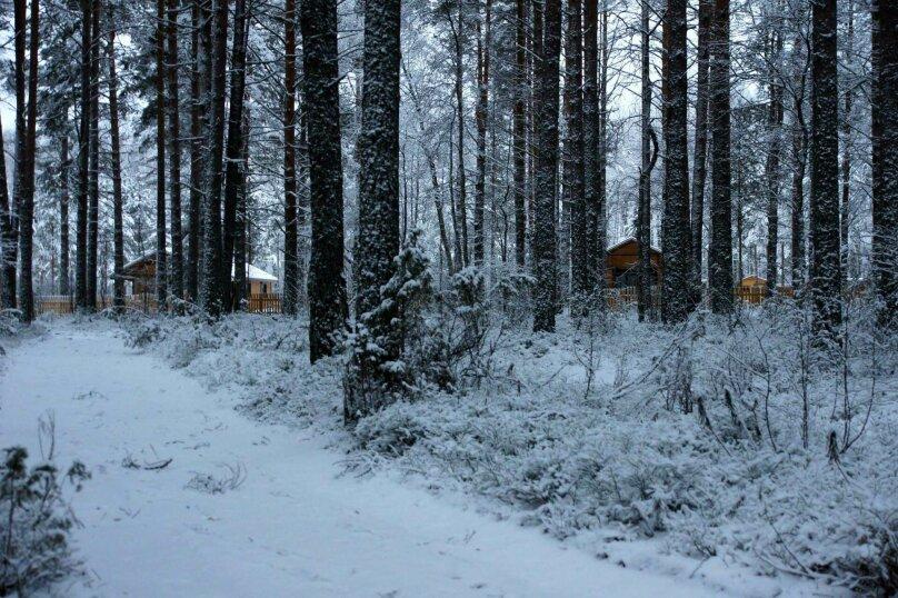 Дом, 100 кв.м. на 8 человек, 2 спальни, урочище Инжунаволок, 4, Петрозаводск - Фотография 9